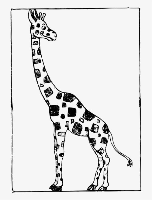 small resolution of cartoon black and white giraffe clipart baby giraffe cartoon black and white giraffe
