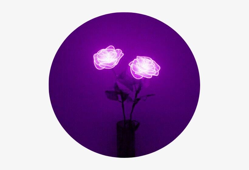 aesthetic lavender background tumblr