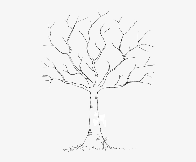 Blank Background Tree For Diy Fingerprint Trees Would