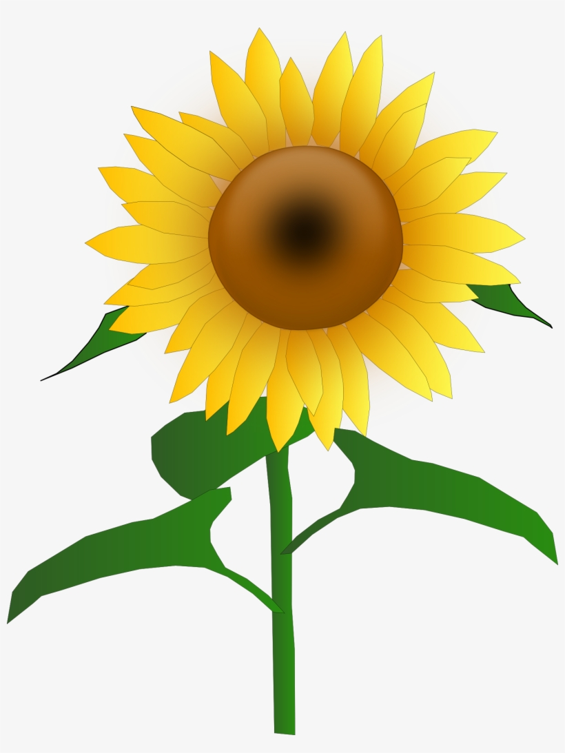 hight resolution of sunflower clipart commercial use sunflower clipart