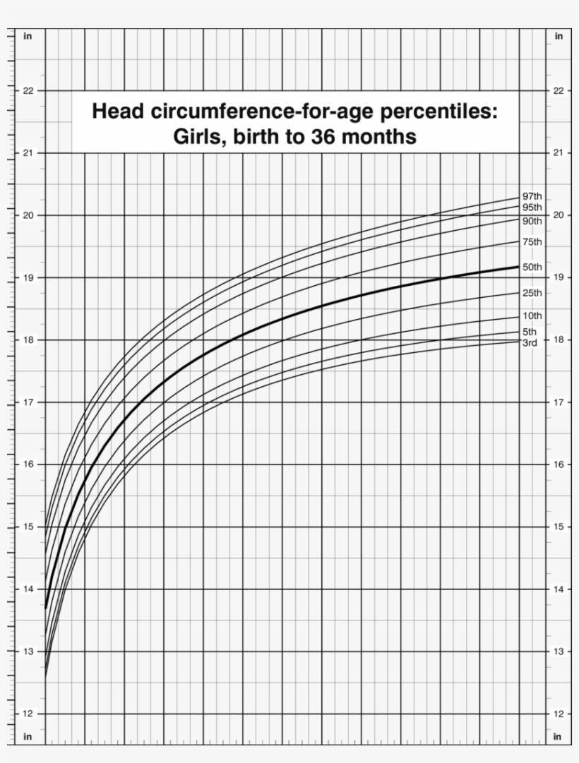 Head Circumference For Age Percentiles Girls Birth ...