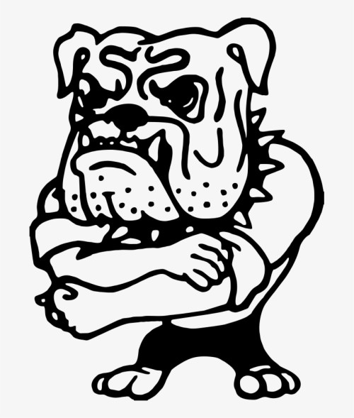small resolution of bulldog clipart high school northern lehigh bulldog band