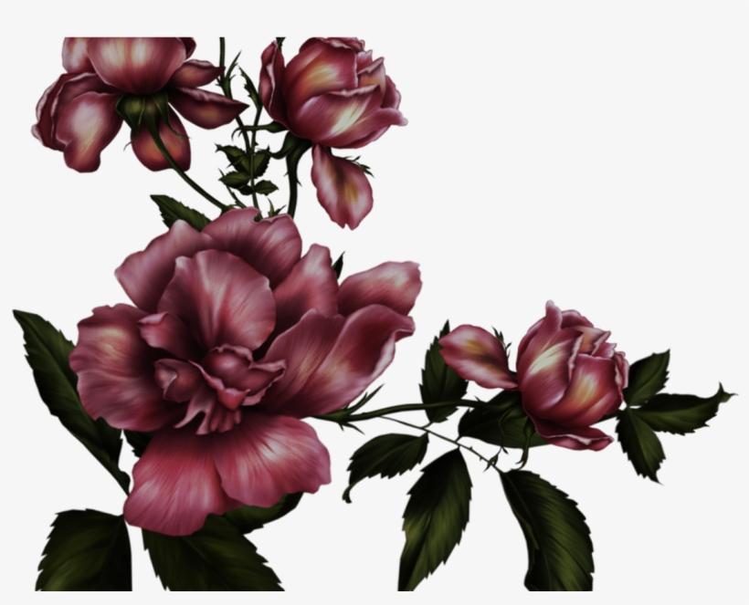 gothic rose transparent background
