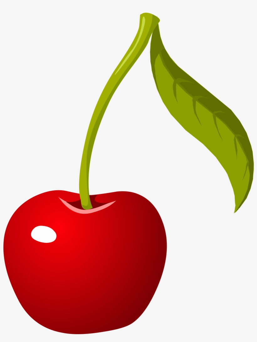 hight resolution of cherry png picture cherry clipart png