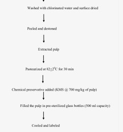 process flow chart for extraction of mango pulp mango processing flow chart [ 820 x 1160 Pixel ]