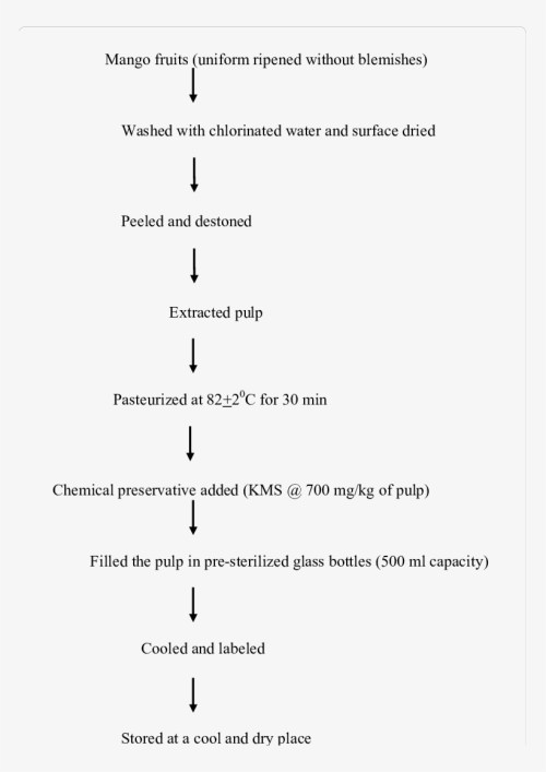 small resolution of process flow chart for extraction of mango pulp mango processing flow chart
