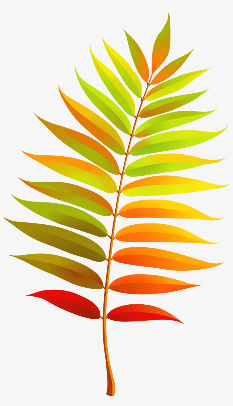 medium resolution of colorful transparent fall leaf clipart transparent clipart fall leaves