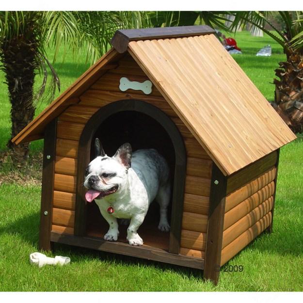Niche pour chien à toit plat ou pointu?