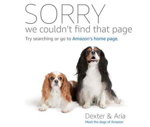 Website Kumpel Amazon Affiliate Link Checker