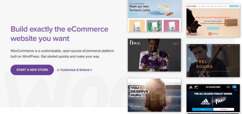 How Do I Import Amazon Products Into Woocommerce?