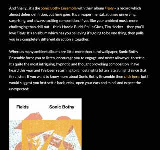 Sonic Bothy album review