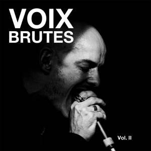 Voix Brutes Vol II
