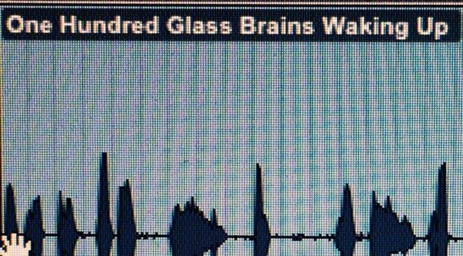 Sarah Tripp/One Hundred Tiny Glass Brains Waking Up