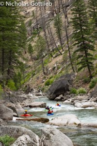 Loon Creek, MF Salmon Tributary