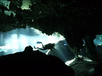 Cenote Diving at Gran Cenote