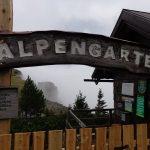 Alpengarten auf der Rax