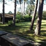 Rätselhafter Platz im Wald