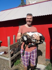 With one of VK Urban Farm's 8 goats, Westside Chicago