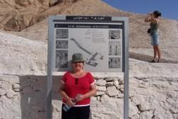 Sam outside the information board for King Tutankhamun.