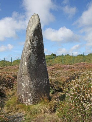 Dry Tree menhir (Standing stone) at Goonhilly.