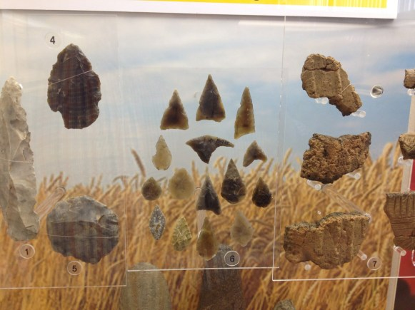 Flint arrowheads at Derby museum