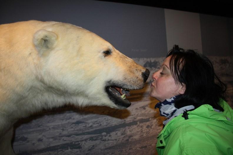 Sam getting up close to a Polar Bear