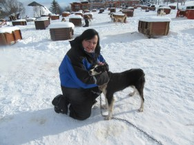 Sam with only another 299 huskies to fuss