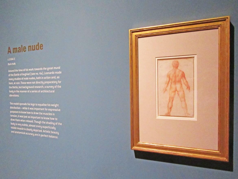 Leonardo da Vinci: Ten Drawings from the Royal Collection