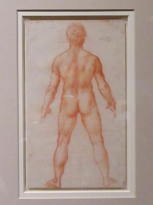 A male nude c.15.04-5