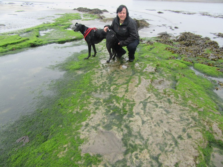 Sam and Nelson examine dinosaur footprints at Staffin