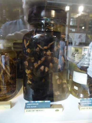 Jar of Moles
