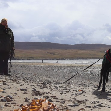 In The Footsteps of Dinosaurs – Isle of Skye