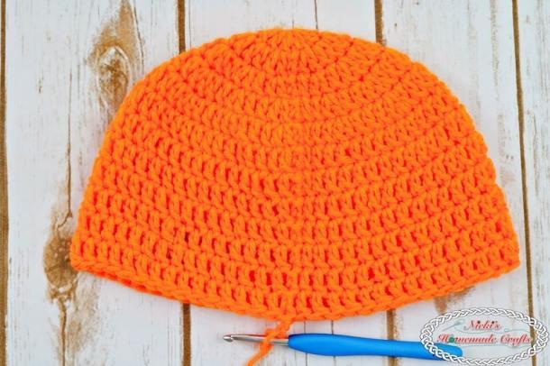 crochet beanie or hat