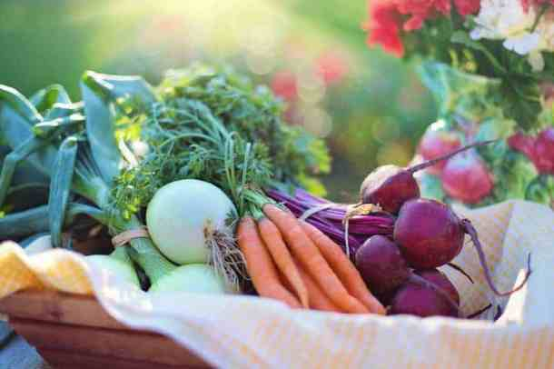 Better Living with Crochet and eating healthy