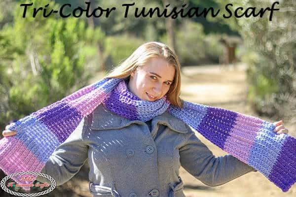 Tri-Color Tunisian Scarf - Free Crochet Pattern plus video tutorial