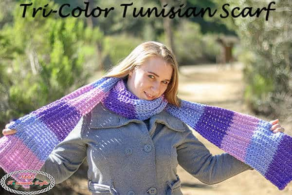 Tri-Color Tunisian Scarf - Free Crochet Pattern plus video tutorial