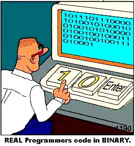 programmer writes  binary to qtemp