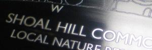 Shoal Hill Common toposcope visual