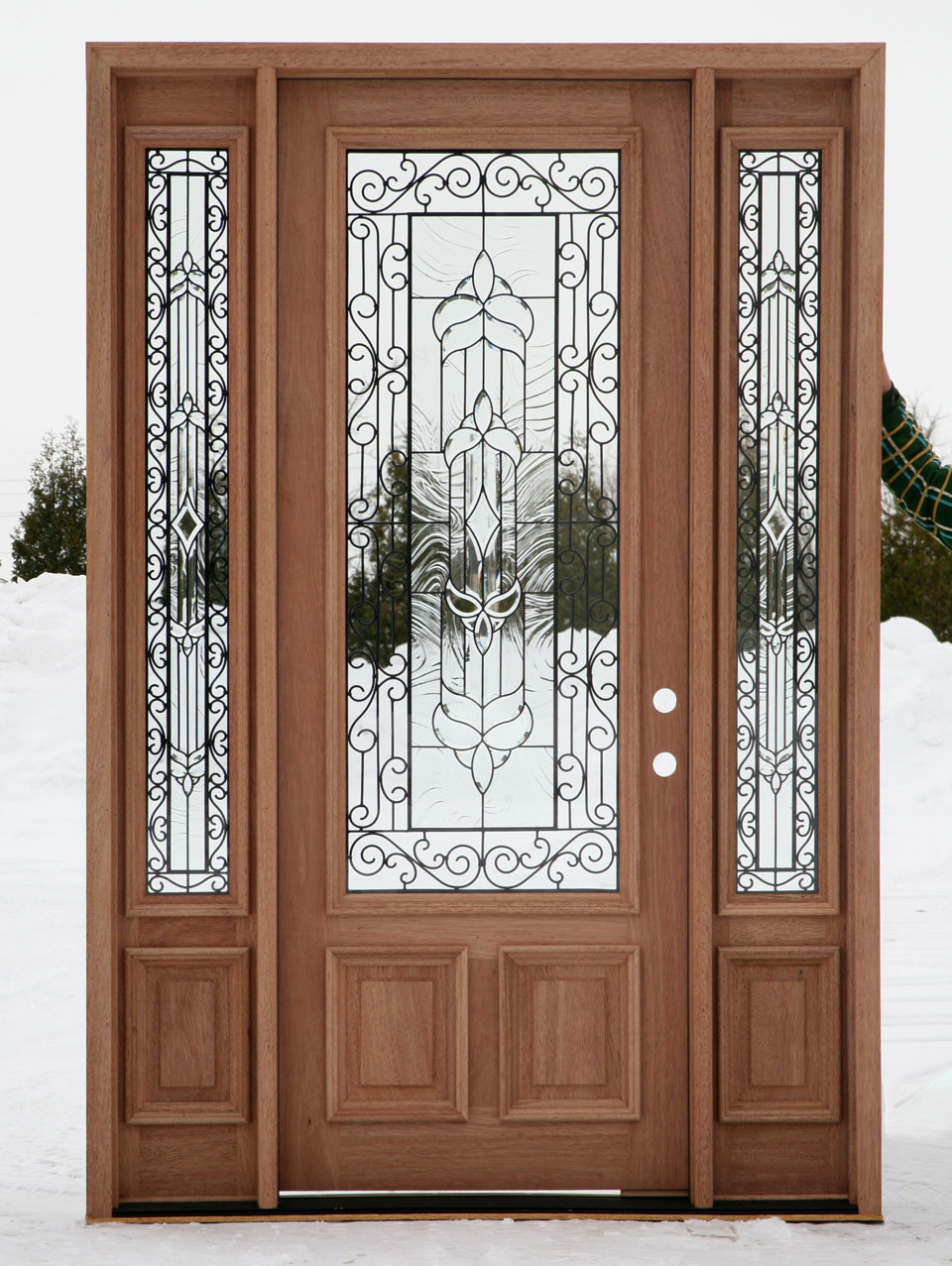 Front Doors with Glass