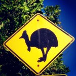 A Cassowary road sign