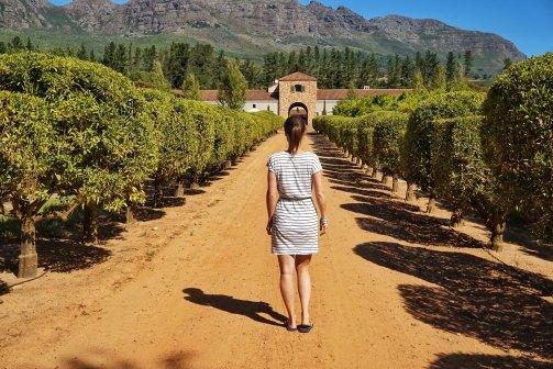Strolling around the Waterford Estate vineyards