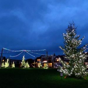 Christmas Tree, Milford on Sea