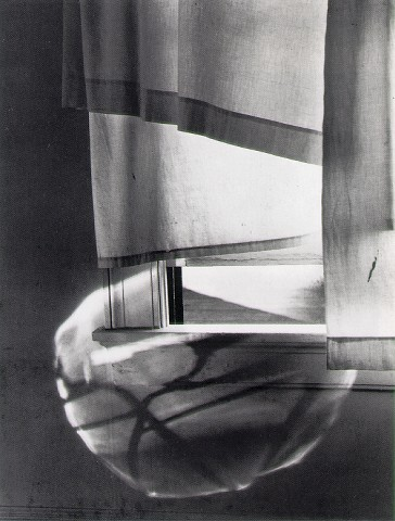 Windowsill Daydreaming, 1958