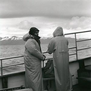 "Húsavík, tour ""Whale Watching"""