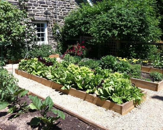 Vegetable Garden (Philadelphia)