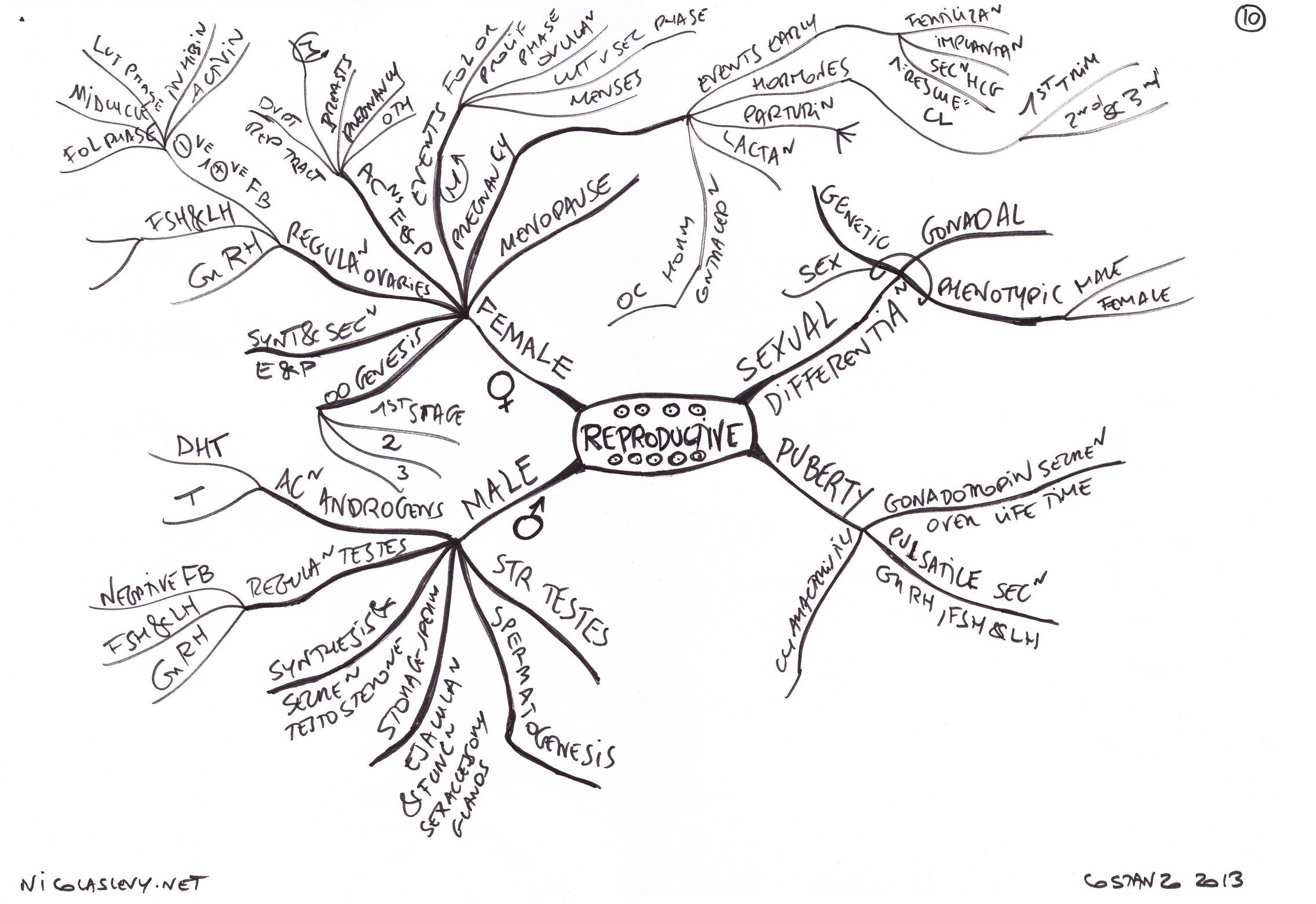 1999 isuzu amigo engine diagram