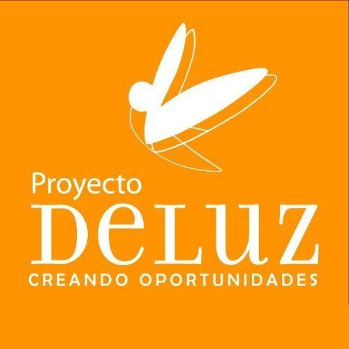 Proyecto De Luz
