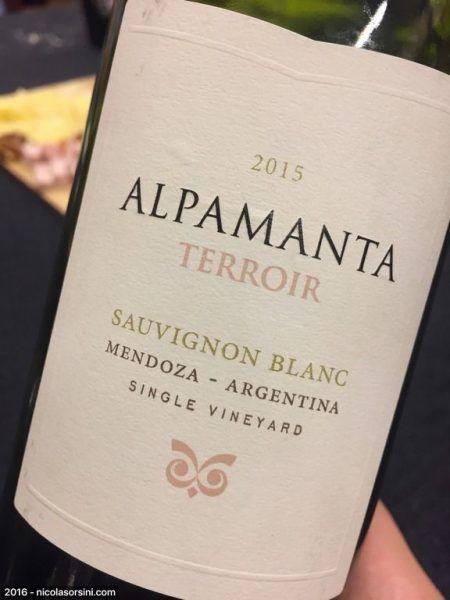 Alpamanta Terroir Sauvignon Blanc 2015