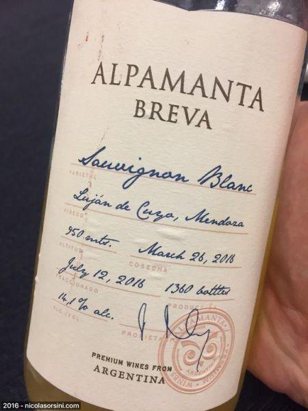 Alpamanta  Breva Sauvignon Blanc 2016