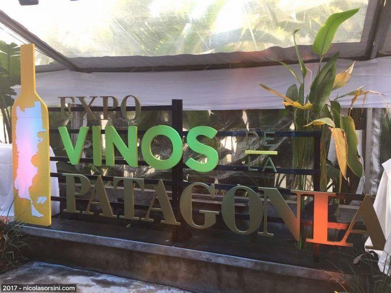 Expo Vinos de la Patagonia